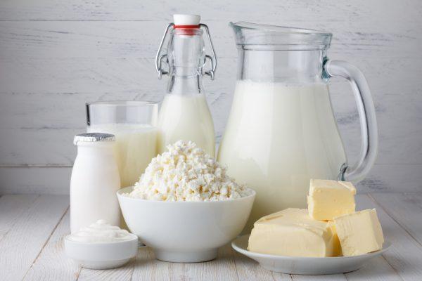 Lactose intolerance test. DNA test.